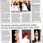 denik201212_med_hr