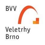 logo_bvv_med